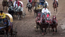 Teams compete in a chuckwagon race at the Calgary Stampede in Calgary, Monday, July 12, 2010. A horse has died from an injury that occurred during a chuckwagon race at this year's Calgary Stampede. Stampede officials confirm something happened to the animal about halfway around the track during Wednesday evening's second heat of the Rangeland Derby. THE CANADIAN PRESS / Jeff McIntosh