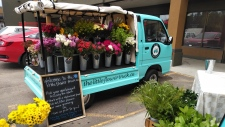 The Little Flower Truck