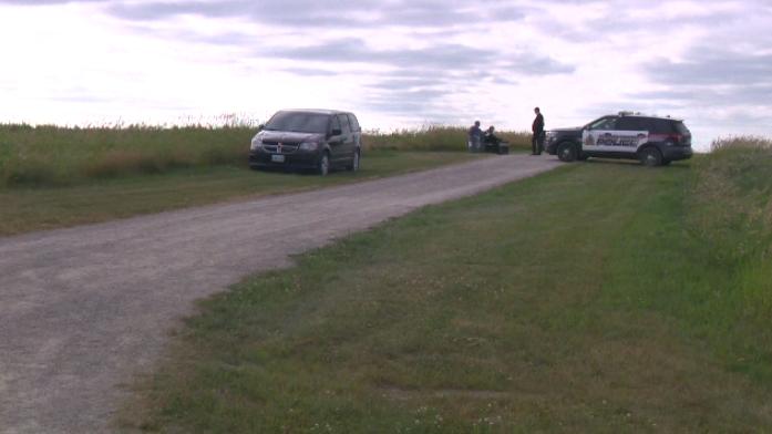 Police investigate McLennan Park