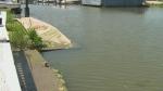 Flooding Essex County