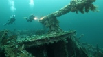 Divers explore the gun on the deck of the SS Saganaga shipwreck off the coast of Bell Island, N.L. The ship is one of four iron ore carriers sunk in 1942 by German U-Boats. Undetonated explosives from the four ships will be retrieved by military divers starting Monday. (THE CANADIAN PRESS/HO-Rick Stanley)