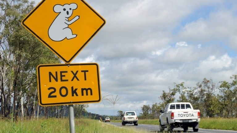 Four children took a stolen four-wheel drive on a 1,000-kilometre road trip across the Australian outback before being nabbed by police, officials said Monday. (AFP)