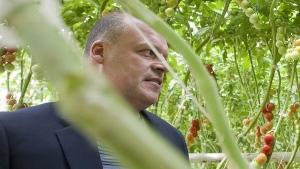 Biologico organic tomato greenhouse owner Stephane Roy is seen in Saint-Sophie, Que., on August 16, 2012. Search and rescue teams will continue their search today for Quebec businessman Roy and his teenage son who've been missing since mid-week after failing to return from a fishing trip in northern Quebec. THE CANADIAN PRESS/Graham Hughes