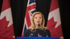 Christine Elliott, Ontario's Deputy Premier and Minister of Health and Long-Term Care, speaks at Bridgepoint Active Healthcare in Toronto on Tuesday, February 26, 2019. (THE CANADIAN PRESS/ Tijana Martin)