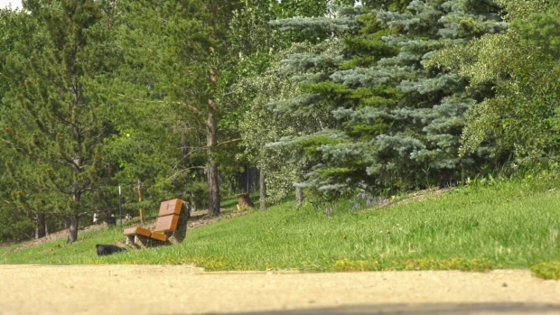 A herbicide not intended for residential neighbourhoods was used in Haddow in 2016.