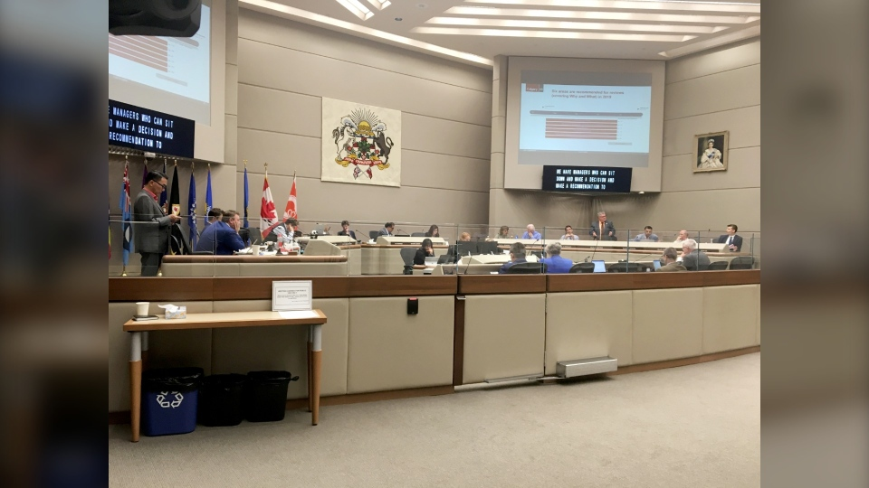 City councillors are reviewing a list of sub-services in an effort to cut costs and reduce the tax burden on small businesses.