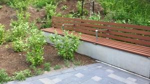 Linda Hunter photo of the bench at Hurdman Station