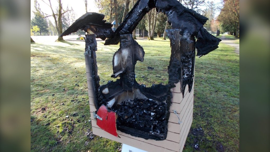 Teens charged after 11 book exchange box fires in Port Coquitlam