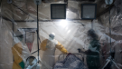 Ebola outbreak in Congo a global emergency: WHO