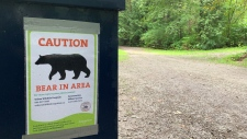 Bear warning sign Coquitlam River Park