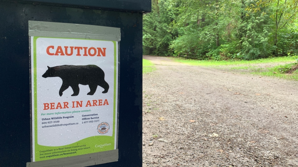 Signs were posted in the park Wednesday warning of a bear in the area. (Shelley Moore/CTV)