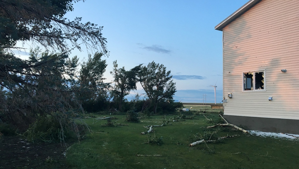 Damaged trees litter the area around a home in Vulcan County following Thursday's storm