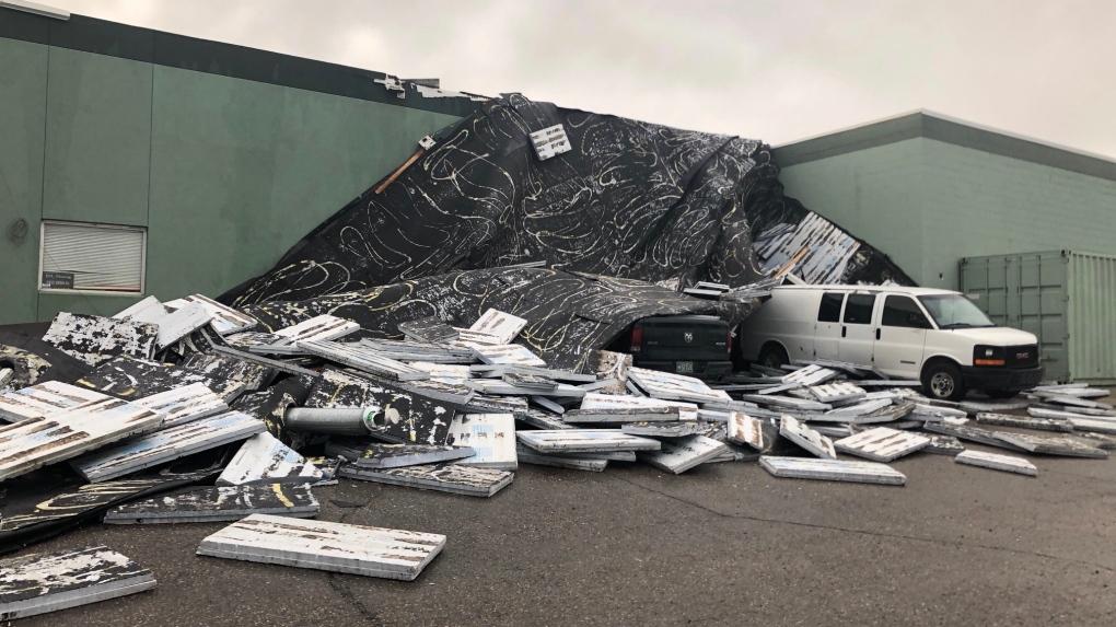 Summer storm causes damage in Saskatoon