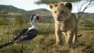 Characters, from left, Zazu, voiced by John Oliver, and young Simba, voiced by JD McCrary, in a scene from 'The Lion King.' (Disney via AP)