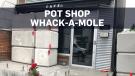 Cannabis store