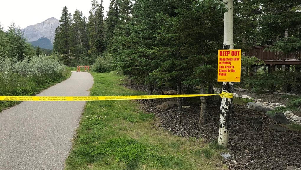 Canmore bear warning