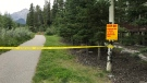 Some trails near Canmore were closed after a grizzly sow and her cubs were seen in the area.