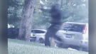 Video shows possible suspect in Brantford shooting