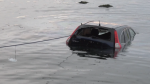 Bystanders jumped into water to save driver