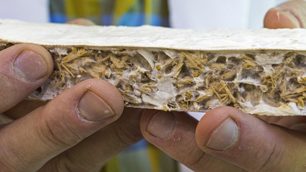 UAA team developing biodegradable insulation