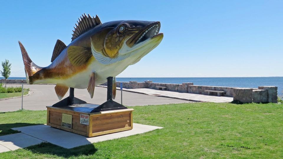 A walleye statue in Garrison, Minn. (Tom Scheck / Minnesota Public Radio via AP)