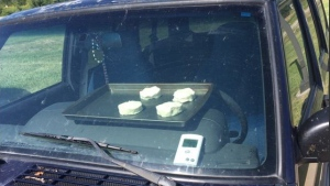 Scorching temperatures in the U.S. saw staff at the National Weather Service in Omaha, Nebraska, bake biscuits in a car. (Twitter/NWSOmaha)