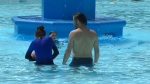 People try to cool off in a pool in Toronto, Ont. on Saturday, July 20, 2019. (CTV Toronto)