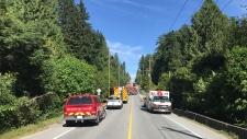 Maple Ridge fire Dewdney Trunk Road