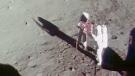 Lunar landing celebration