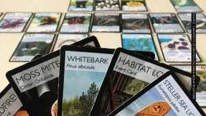 Pokemon-like card game hopes to increase education