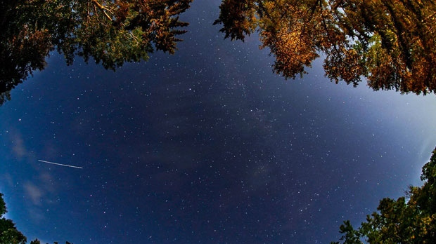 starry nights and camp fires, an ants eye view. Photo by Melissa Tokariwski.