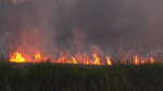 Fast-moving brush fire under investigation