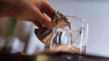 A cocktail is made in Ottawa in this file photo dated April 11, 2015. A new study finds that ER visits due to alcohol consumption have jumped 175 per cent among Ontario adults between 25 and 29, and 86 per cent among women. THE CANADIAN PRESS/Justin Tang