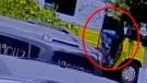 Ice cream truck stolen in California
