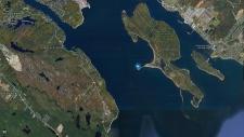 Jane pings in Halifax Harbour