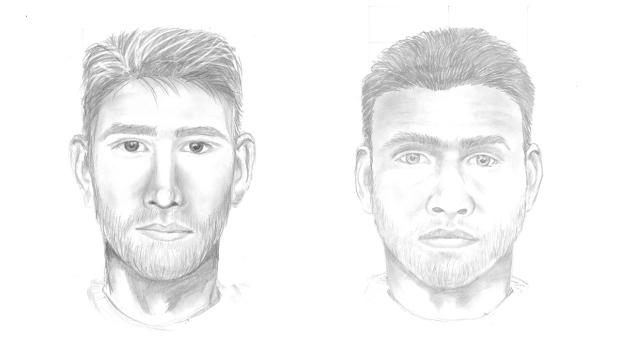 Suspect sketches