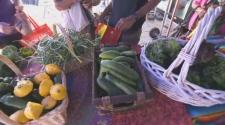 À-Ma-Baie Solidarity Market in Pierrefonds-Roxboro
