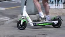 Lime, e-scooter, shared,