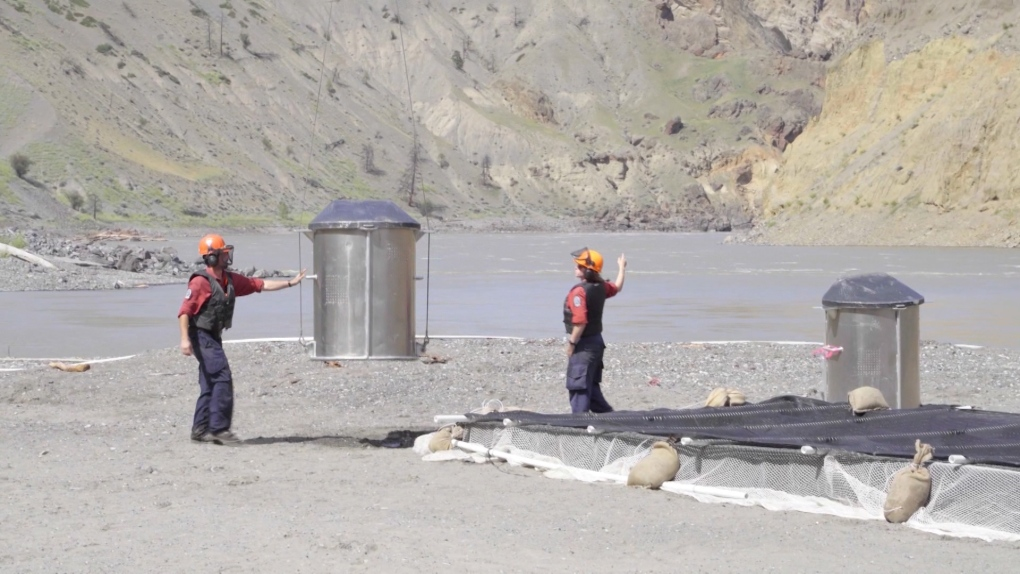 'Fish transportation system' could be used to move salmon trapped by slide near Lillooet