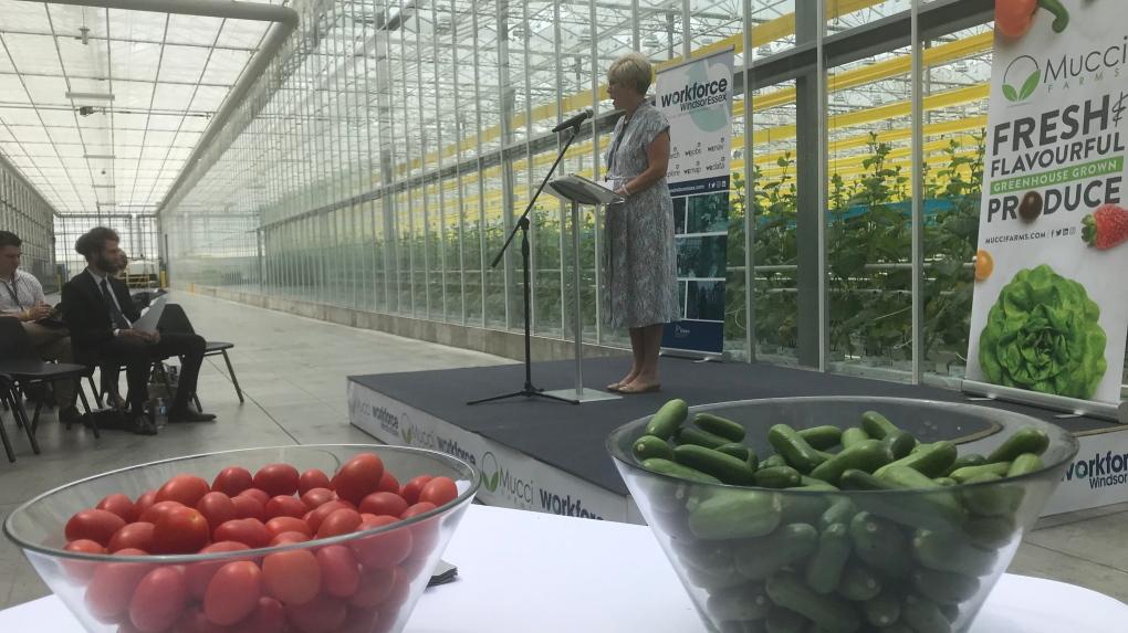 Workforce WE agri-food