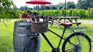 Fraser Valley Wine