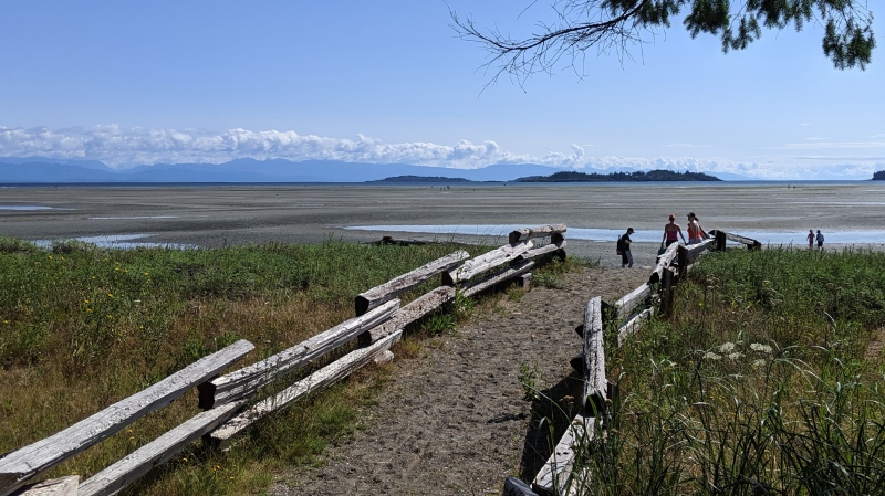 Rathtrevor Beach on Vancouver Island is pictured: (Edna Lotts)
