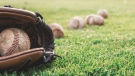 With coronavirus cases on the decline, the baseball in South Korea may began in early May.