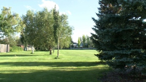 Lethbridge mom concerned after she say her son was stuck by