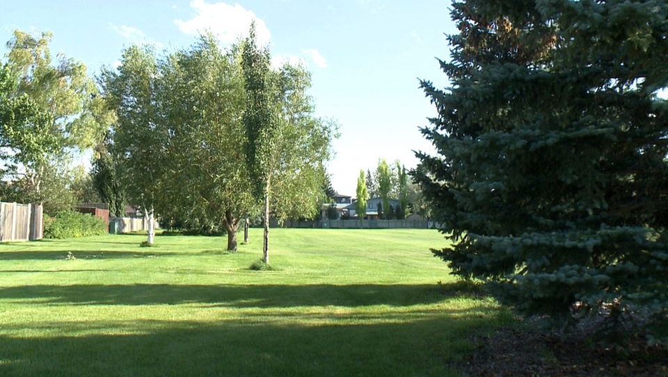 A Lethbridge mom is very concerned about safety at a city park after she says her son was stuck by a discarded syringe while playing.