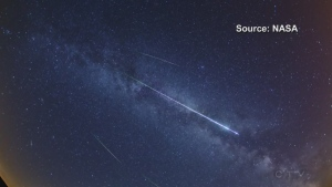 Annual celestial event brings meteor shower