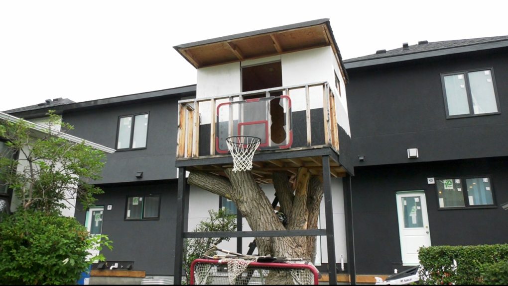 Neighbours head to Calgary appeal board over treehouse dispute
