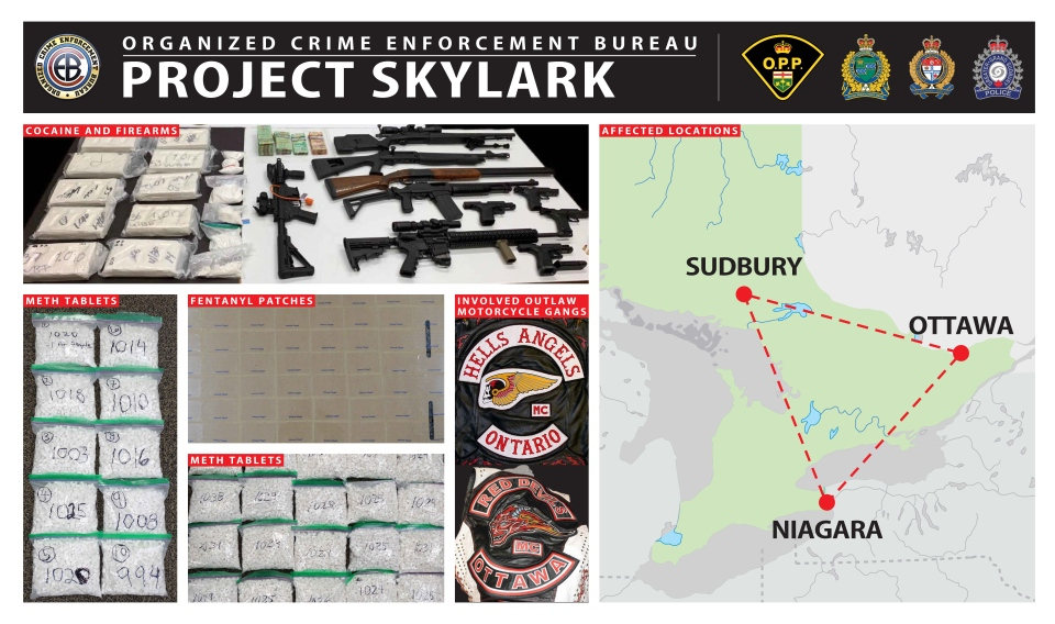Project Skylark