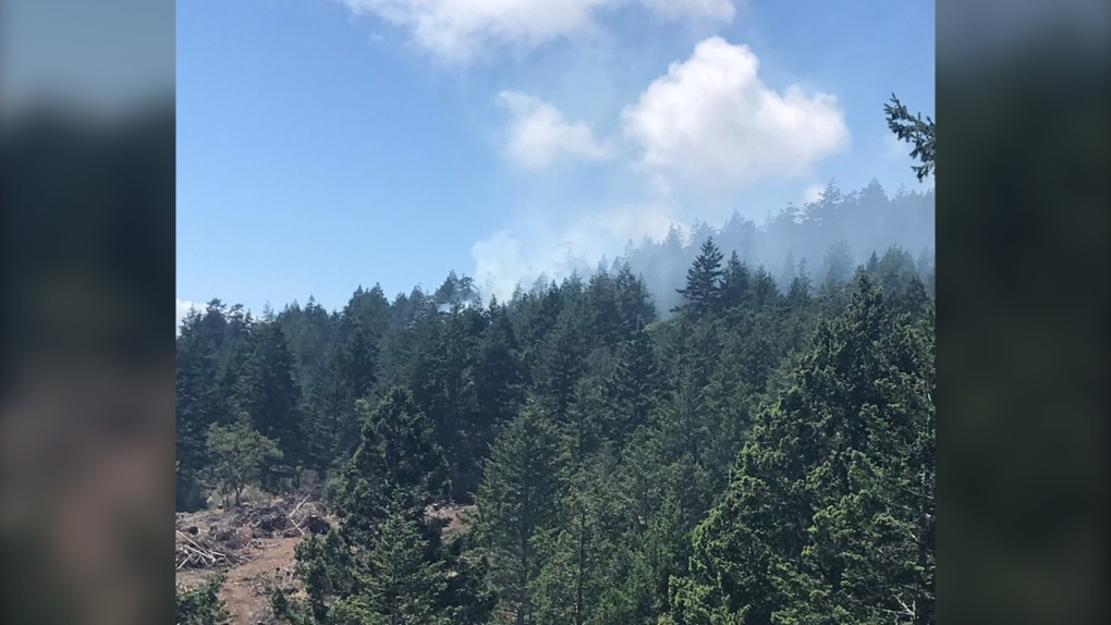 East Sooke grass fire that forced evacuation appears to be under control