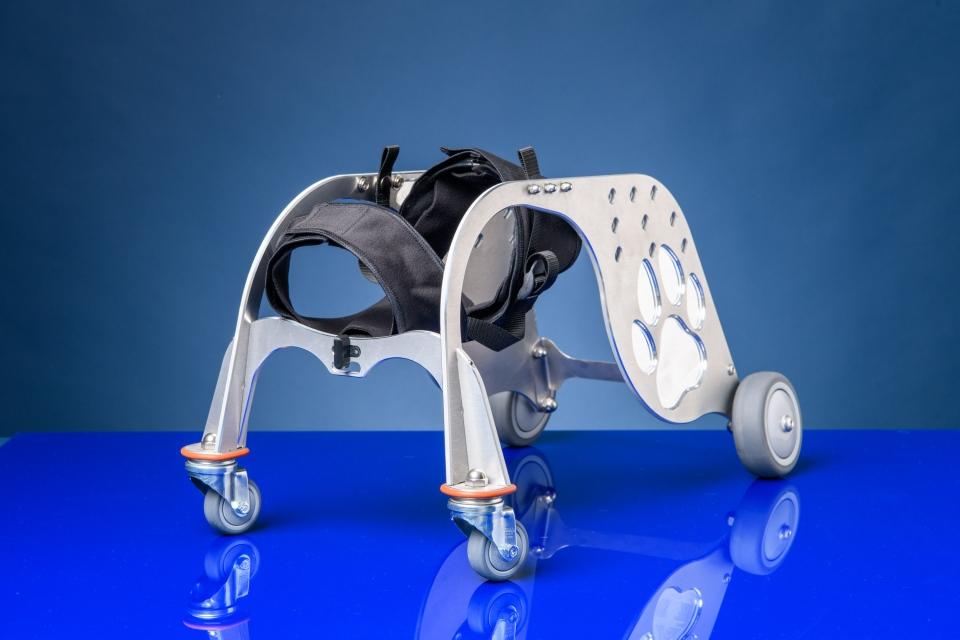 Dog wheelchair prototype